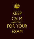 KEEP CALM AND STUDY FOR YOUR EXAM - Personalised Tea Towel: Premium