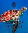 KEEP CALM AND VOTE  AIDAN FOR PRESIDENT - Personalised Tea Towel: Premium