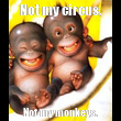 Not my circus, Not my monkeys. - Personalised Tea Towel: Premium