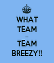 WHAT TEAM ... TEAM BREEZY!! - Personalised Tea Towel: Premium