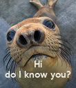 Hi do I know you? - Personalised Poster large
