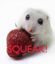 SQUEAK!  - Personalised Poster large