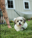 And So The  Adventure Begins - Personalised Poster large