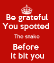 Be grateful You spotted  The snake Before  It bit you - Personalised Poster large