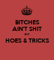 BITCHES AIN'T SHIT BUT HOES & TRICKS  - Personalised Poster large