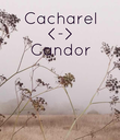 Cacharel <-> Candor      - Personalised Poster large