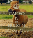 CAMEO IS SO FRIGGIN GORGEOUS - Personalised Poster large