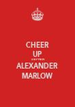 CHEER UP STEPHEN ALEXANDER MARLOW - Personalised Poster large
