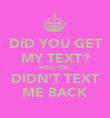 DID YOU GET MY TEXT? WELL YOU DIDN'T TEXT ME BACK - Personalised Poster large