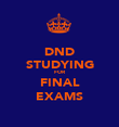 DND STUDYING FOR FINAL EXAMS - Personalised Poster large
