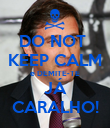 DO NOT  KEEP CALM e DEMITE-TE JÁ CARALHO! - Personalised Poster large