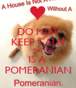 DO NOT KEEP CALM THIS IS A  POMERANIAN - Personalised Poster large