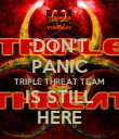 DON'T PANIC TRIPLE THREAT TEAM IS STILL HERE - Personalised Poster large