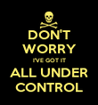 DON'T WORRY I'VE GOT IT ALL UNDER CONTROL - Personalised Poster large