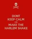 DONT KEEP CALM AND  MAKE THE HARLEM SHAKE - Personalised Poster large