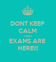 DONT KEEP  CALM  cause  EXAMS ARE  HERE!!! - Personalised Poster large