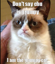 Don't say chu is grumpy I am the grumpy cat - Personalised Poster large