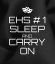 EHS # 1 SLEEP AND CARRY ON - Personalised Poster large