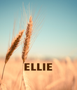 ELLIE  - Personalised Poster large