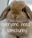 everyone need  somebunny - Personalised Poster large
