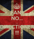 FAN? NO... ... DIRECTIONER !!! - Personalised Poster large