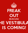 FREAK OUT BEACUSE THE VESTIBULAR IS COMING! - Personalised Poster large