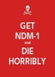 GET NDM-1 and DIE HORRIBLY - Personalised Poster large