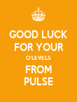 GOOD LUCK FOR YOUR O'LEVELS FROM PULSE - Personalised Poster large