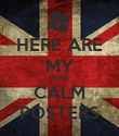 HERE ARE MY KEEP CALM POSTERS - Personalised Poster large