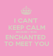 I CAN'T  KEEP CALM BECAUSE I WAS ENCHANTED  TO MEET YOU - Personalised Poster large