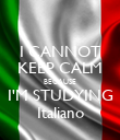 I CANNOT KEEP CALM BECAUSE I'M STUDYING Italiano - Personalised Poster large