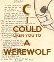 I COULD LIKEN YOU TO A WEREWOLF - Personalised Poster large