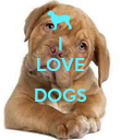 I LOVE  DOGS  - Personalised Poster large