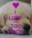 I  LOVE  YOU TOO MUCH  - Personalised Poster large