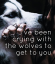i've been  crying with  the wolves  to get to you - Personalised Poster large