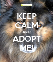 KEEP CALM AND ADOPT ME! - Personalised Poster large