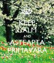 KEEP CALM AND ASTEAPTA PRIMAVARA - Personalised Poster large