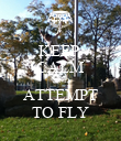 KEEP  CALM AND ATTEMPT TO FLY - Personalised Poster large