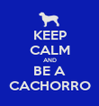 KEEP CALM AND BE A CACHORRO - Personalised Poster large