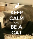 KEEP CALM AND BE A CAT - Personalised Poster large