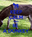 KEEP CALM AND BE  A DONKEY - Personalised Poster large