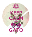 KEEP CALM AND BE A GATO - Personalised Poster large
