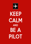 KEEP CALM AND BE A PILOT - Personalised Poster large