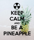 KEEP CALM AND BE A PINEAPPLE - Personalised Poster large