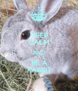 KEEP CALM AND BE A RABBIT - Personalised Poster large