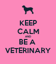KEEP CALM AND BE A  VETERINARY - Personalised Poster large