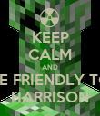 KEEP CALM AND BE FRIENDLY TO HARRISON - Personalised Poster large