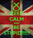 KEEP CALM AND BE STUPID!!!!!!! - Personalised Poster large
