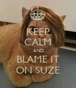 KEEP CALM AND BLAME IT ON SUZE - Personalised Poster large
