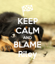 KEEP CALM AND BLAME Riley - Personalised Poster large